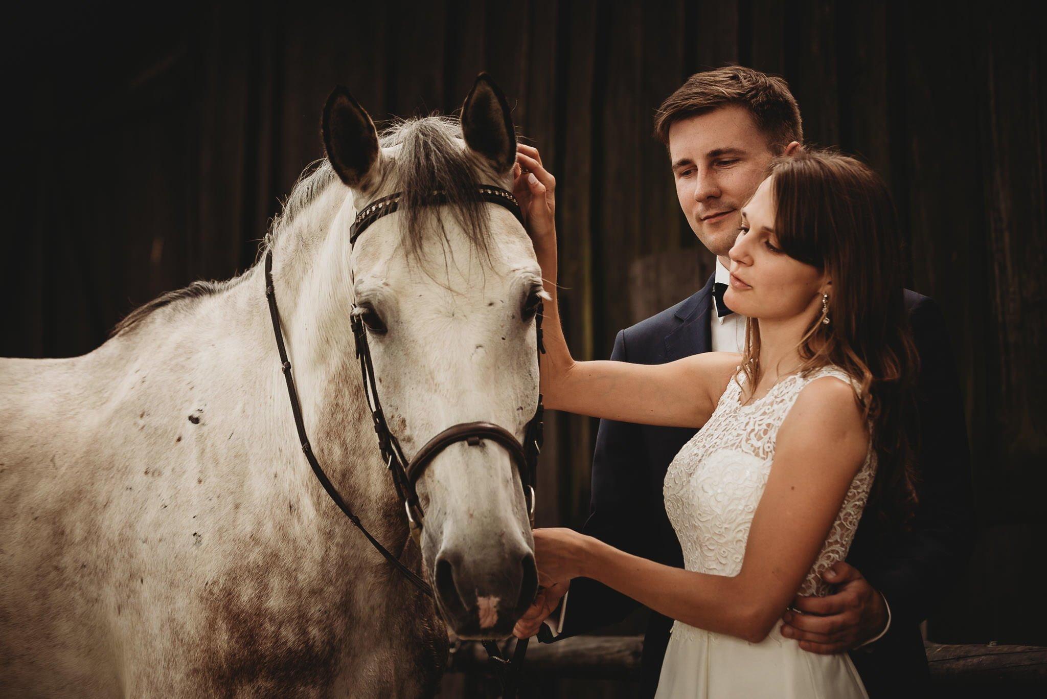Monika i Michał, wesele w Paryżu i sesja plenerowa w stadninie koni w Czołowie 366