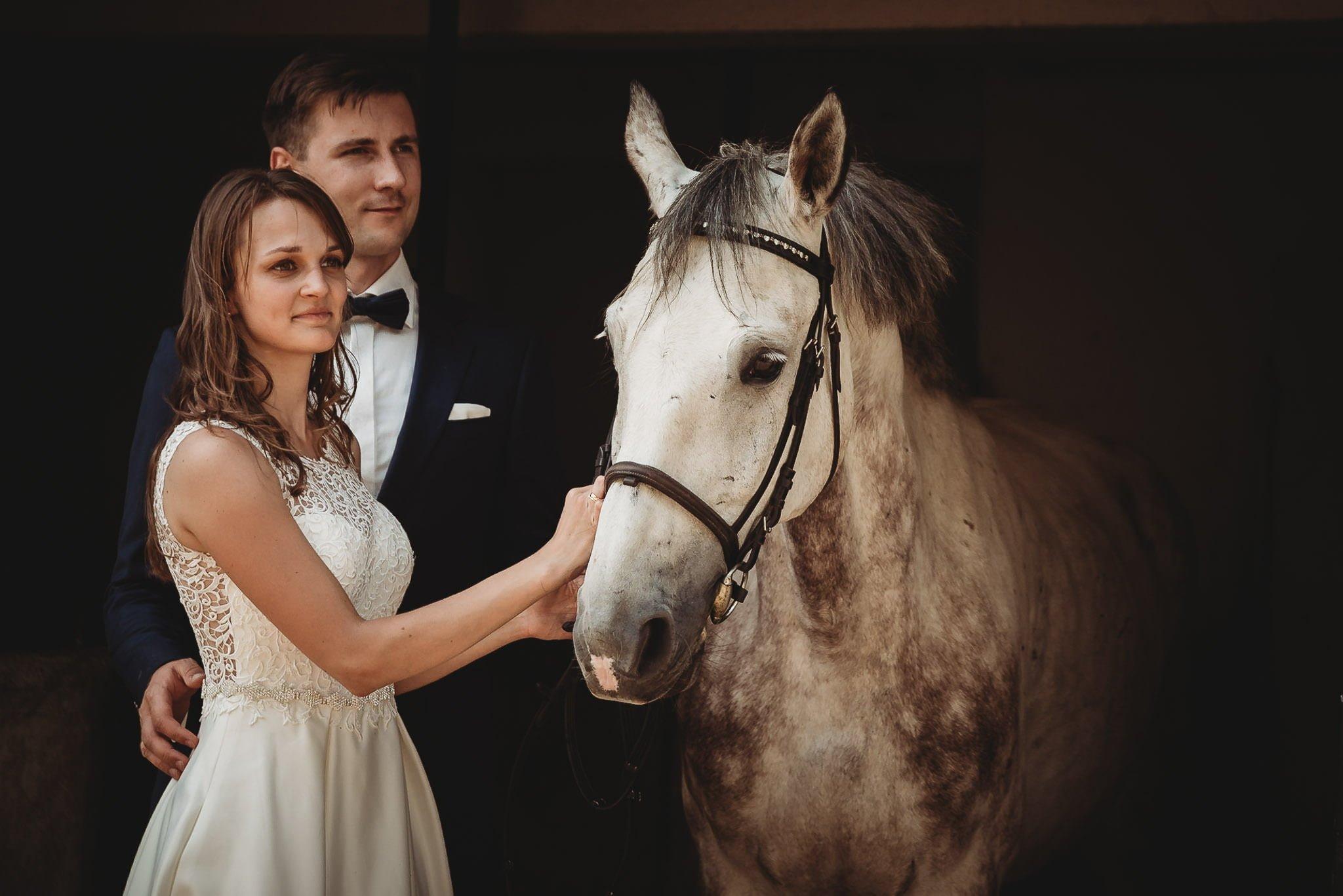 Monika i Michał, wesele w Paryżu i sesja plenerowa w stadninie koni w Czołowie 378