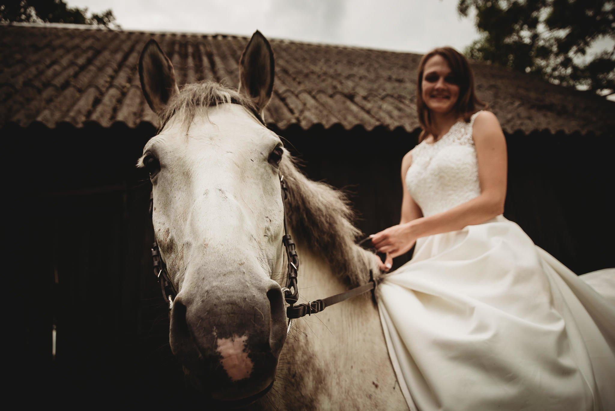 Monika i Michał, wesele w Paryżu i sesja plenerowa w stadninie koni w Czołowie 394