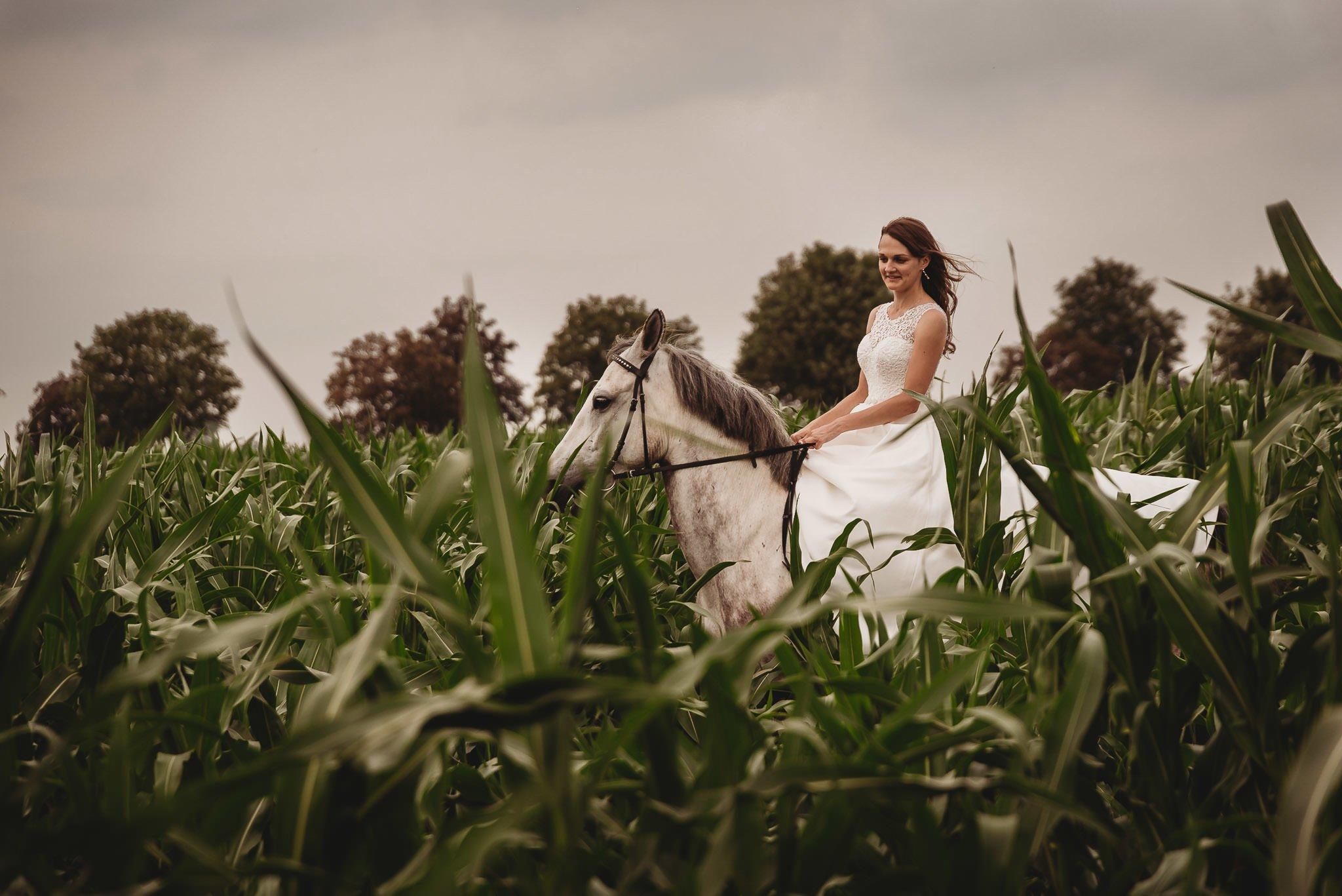 Monika i Michał, wesele w Paryżu i sesja plenerowa w stadninie koni w Czołowie 406