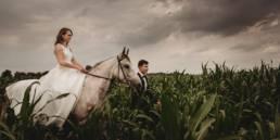 Monika i Michał, wesele w Paryżu i sesja plenerowa w stadninie koni w Czołowie 24