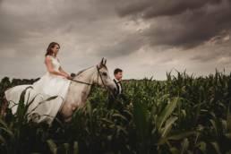 Monika i Michał, wesele w Paryżu i sesja plenerowa w stadninie koni w Czołowie 7