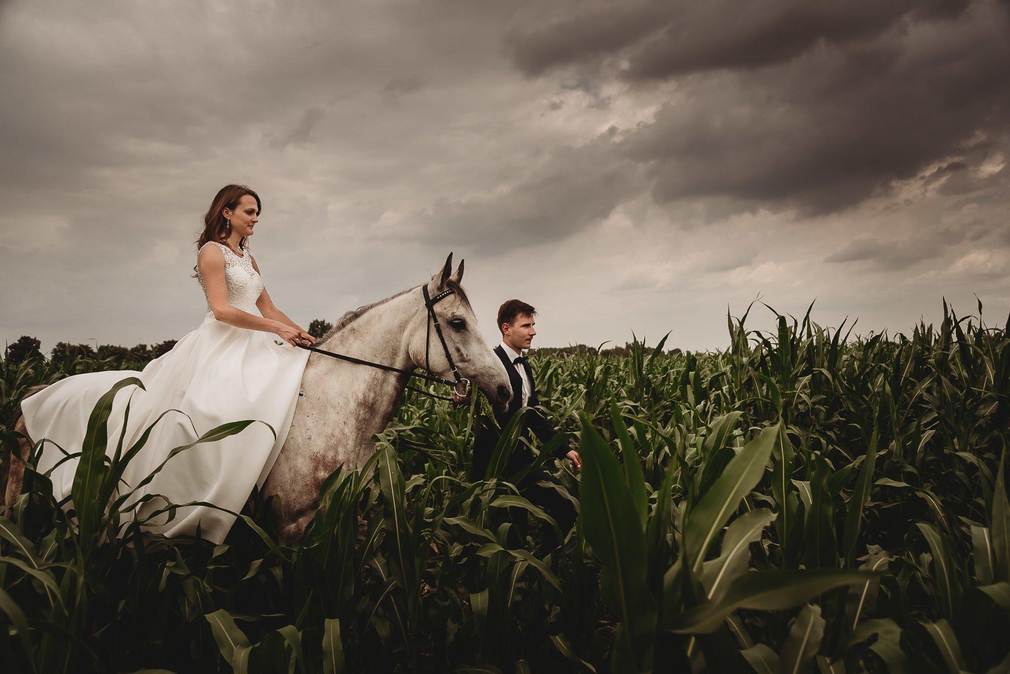 Monika i Michał, wesele w Paryżu i sesja plenerowa w stadninie koni w Czołowie 410