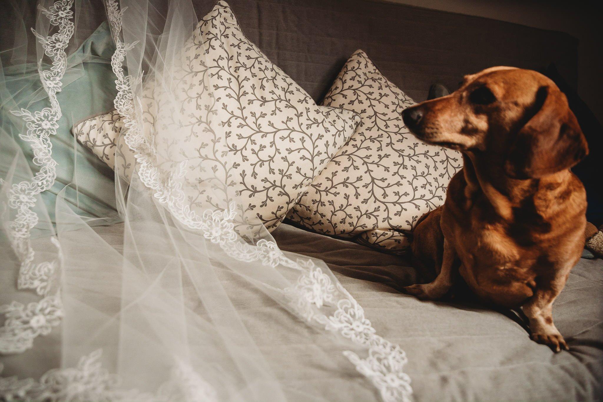 Płacz, łzy, śmiech, szał mieszanka wybuchowych emocji na niezapomnianym ślubie w Jaocinie| fotograf ślubny Konin 31