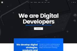 Creative Digital Agency 3